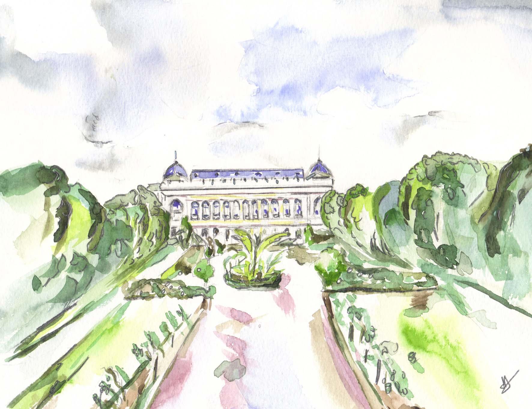 Armellemauzat archive du blog le jardin des plantes for Plantes paris